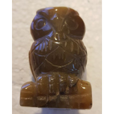 Tigers Eye Owl